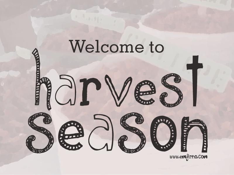 sept-harvest